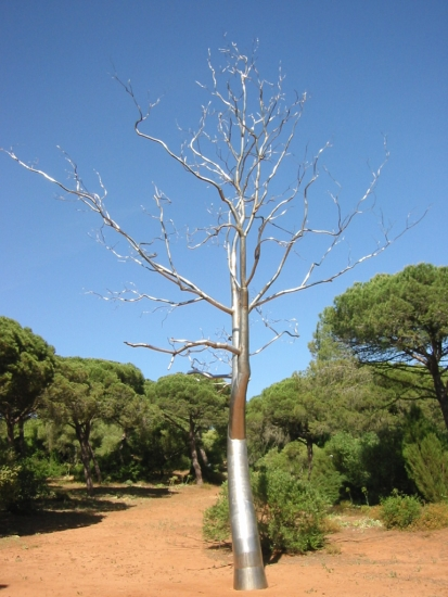 Roxy Paine, Transplanted - Source: www.costadelaluz.net